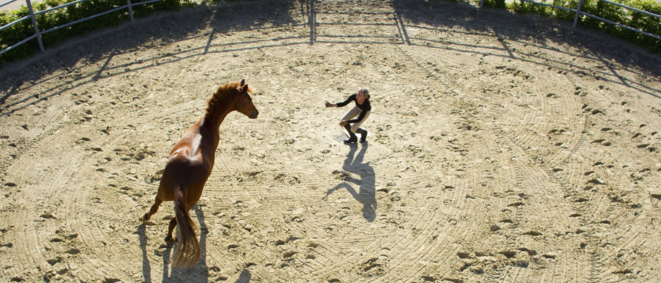 4446708_Christiane_Schwahlen_Natural_Horsemanship