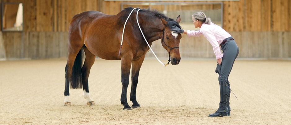 4447369_Christiane_Schwahlen_Natural_Horsemanship