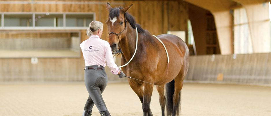 4447430_Christiane_Schwahlen_Natural_Horsemanship