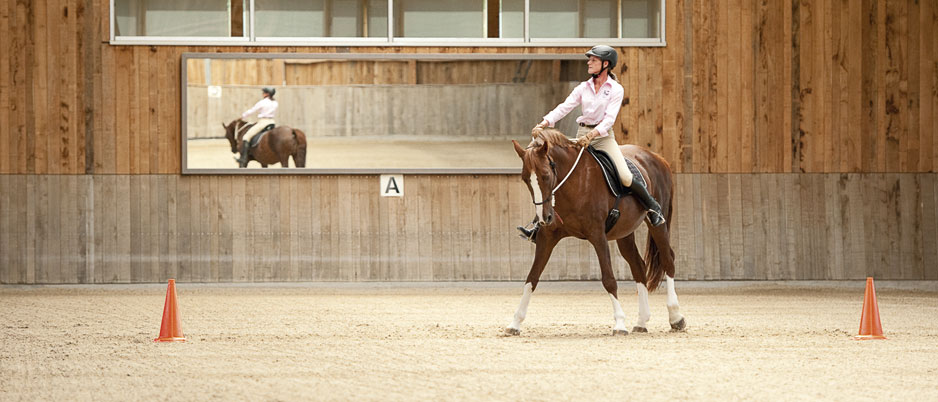 ASC7277_Christiane_Schwahlen_Natural_Horsemanship