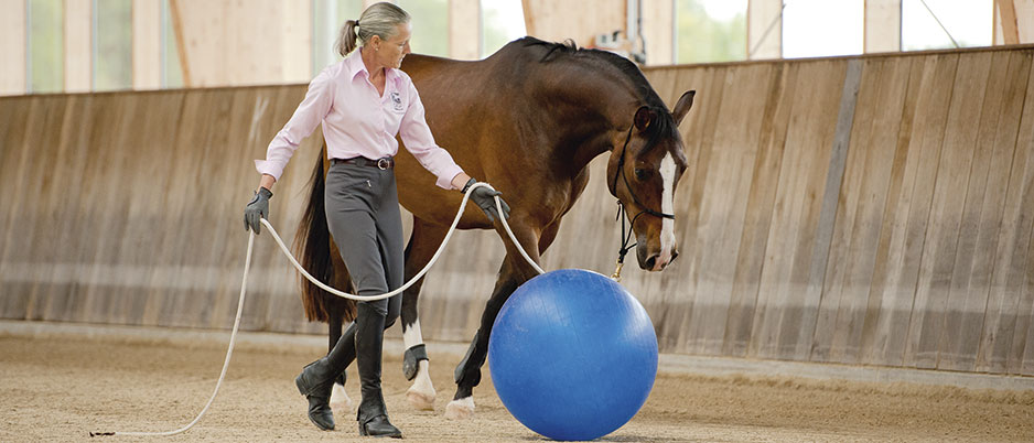 DSC2520_Christiane_Schwahlen_Natural_Horsemanship