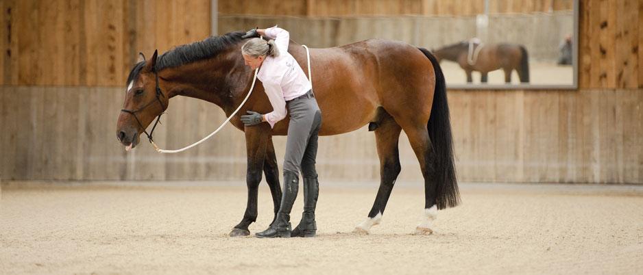 DSC2910_Christiane_Schwahlen_Natural_Horsemanship