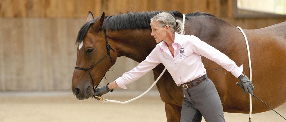DSC3435_Christiane_Schwahlen_Natural_Horsemanship