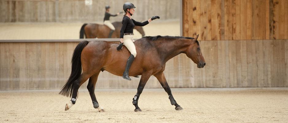 DSC3617_Christiane_Schwahlen_Natural_Horsemanship