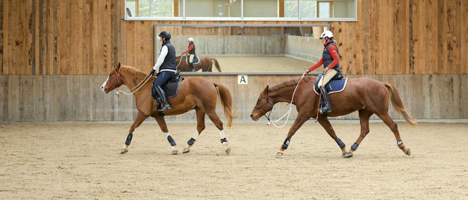 d0521_Christiane_Schwahlen_Natural_Horsemanship