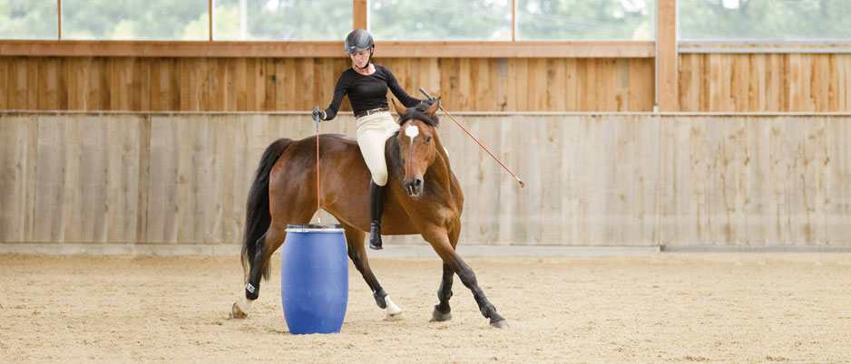 d1635_Christiane_Schwahlen_Natural_Horsemanship2