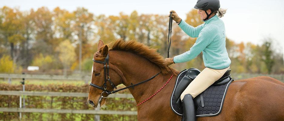 d1967_Christiane_Schwahlen_Natural_Horsemanship