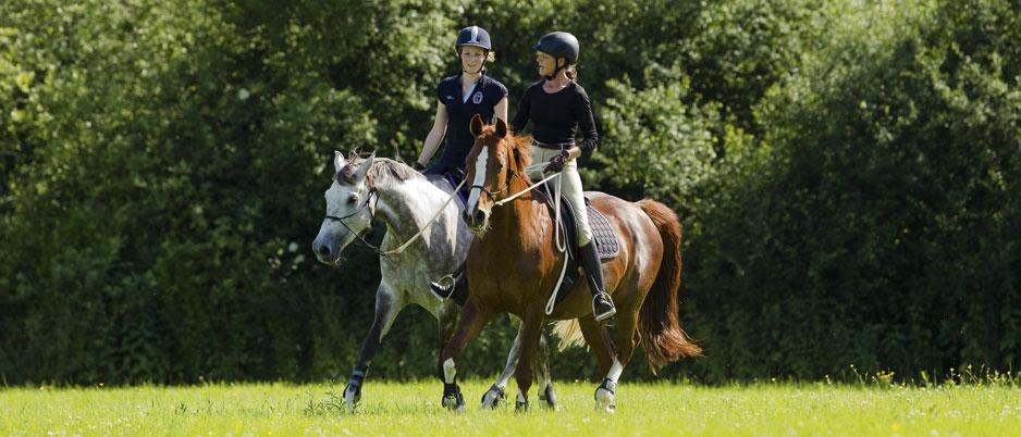 d3844_Christiane_Schwahlen_Natural_Horsemanship